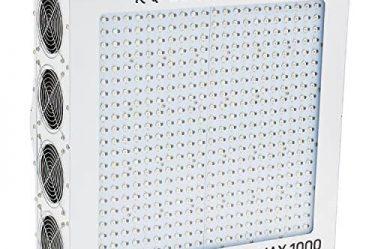 Black Dog LED PhytoMAX 1000 Grow Lights